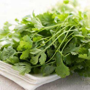 Detox-Detoxification Herbs