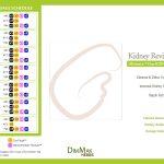 kidney-cleanse-detox